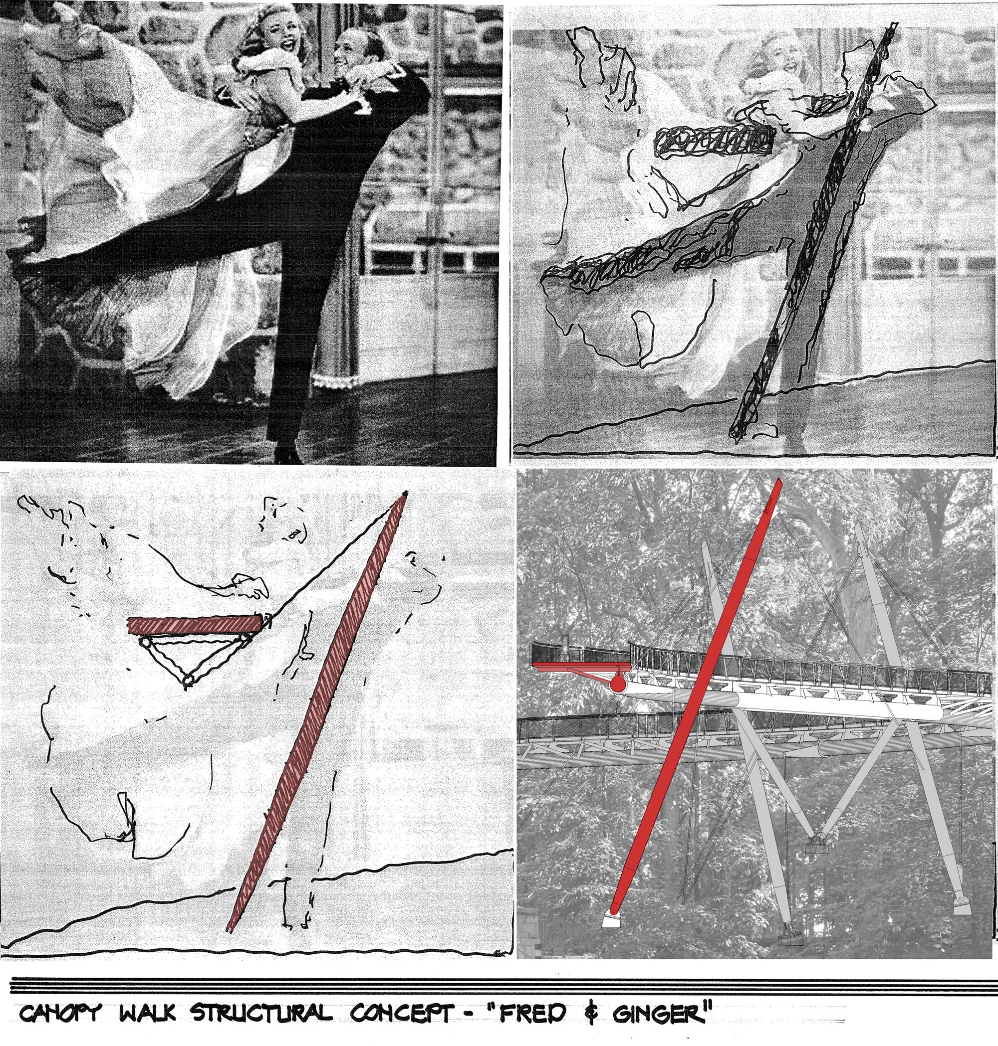 Figure 6, Canopy Walk Concept Art